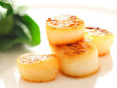 Pan seared sea scallops — Stok fotoğraf