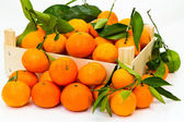 Box full of fresh mandarin with green leaves — Stock Photo