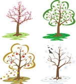 Trees during the seasons of the year — Stock Vector