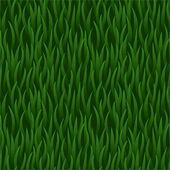Green grass field seamless background — Wektor stockowy