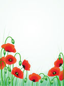 Red poppies background — Stock Vector