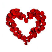 Heart of petals — Stock Photo