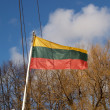 Fluttering flag of the Lithuanian republic — Stock Photo