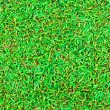 Wet green grass field surface — ストック写真