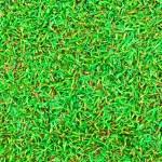 povrchu pole vlhké zelené trávy — Stock fotografie