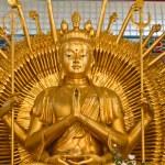 """Bodhisattva """"Guan Yin"""" statue — Stock Photo #8804226"""