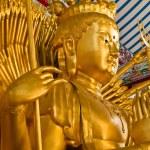 """Bodhisattva """"Guan Yin"""" statue — Stock Photo #8811780"""