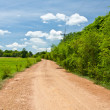 Country road with green trees - Stok fotoğraf