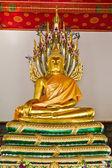 ナガ族の様式によって覆われている仏像 — ストック写真