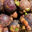 Group of mangosteen — Stock Photo