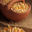 Dried corn - Stock Photo