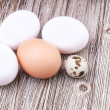 Types of eggs — Stock Photo