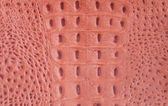 Crocodile-skin leather — Foto Stock