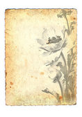 Grunge old paper with flowers — Stock Photo