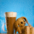 Bunny and coffee latte behind rainy window, shallow dof on glass - Foto de Stock  