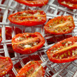Sundried cherry tomatoes on food dehydrator tray, shallow dog — Stock Photo