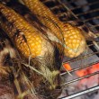 Stock Photo: Bbq sweetcorn with leaves,