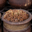 Dried cinnamon spices in the Marrakesh street shop — Stock Photo