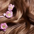 Stock Photo: Beautiful healthy shiny hair with sakurflowers