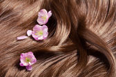 Beautiful healthy shiny hair with sakura flowers — Stock Photo
