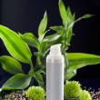 Stock Photo: Face cream moisturizer among bamboo leaves and flowers