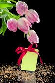 Schöne tulpen und ein leeres geschenk-tag mit bogen — Stockfoto