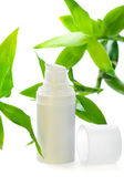 Face cream/serum/lotion/moisturizer among bamboo leaves — Stock Photo