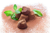 Chocolate truffles with fresh mint dusted with cocoa powder — Stock Photo