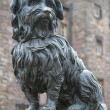 The statue of Greyfriars Bobby, a famous Terrier, in Edinburgh, - Stock Photo
