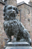 The statue of Greyfriars Bobby, a famous Terrier, in Edinburgh, — Stock Photo