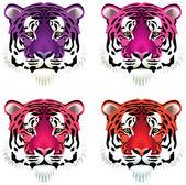 Vector cabezas de tigre — Vector de stock