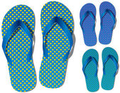 Vector set of flip flops — Stock vektor