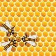 Royalty-Free Stock Imagen vectorial: Vector working bees on honeycells