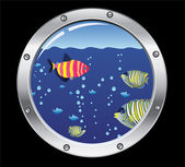 Vector porthole and colorful fishes — Stock Vector