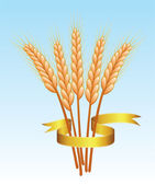 Vector wheat ears and golden ribbon — Stock Vector