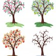 Royalty-Free Stock Vector Image: Vector four seasons of apple tree