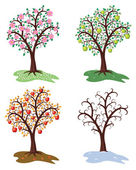 Vector four seasons of apple tree — Stock Vector