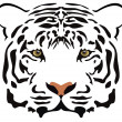 Vector tiger head — Stock Vector