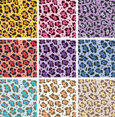 Vector colorful animal skin textures of leopard — Stock Vector