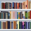 Vector modern bookshelf - Stock Vector