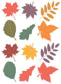 Vector fall leaves — Stock Vector