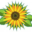 Vector sunflower — Stock Vector #9688761