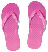 Vector pair of flip flops — Stock Vector