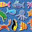 Vector colorful sea animals - Stock Vector