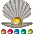 Royalty-Free Stock Vektorfiler: Vector pearls and a shell