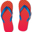 Vector pair of flip flops - Stockvektor