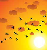 Vector flock of flying birds, clouds and bright sun — Stock Vector