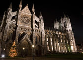 Christmas tree in front of Westminster Abbey in London England — Stock Photo