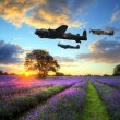 Stock Photo: World War 2 RAF airplanes flying at sunset over vibrant lavender