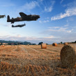Stock Photo: World War 2 RAF airplanes flying over lavender fields at sunset